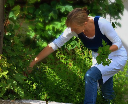 Köchin holt Kräuter im Garten
